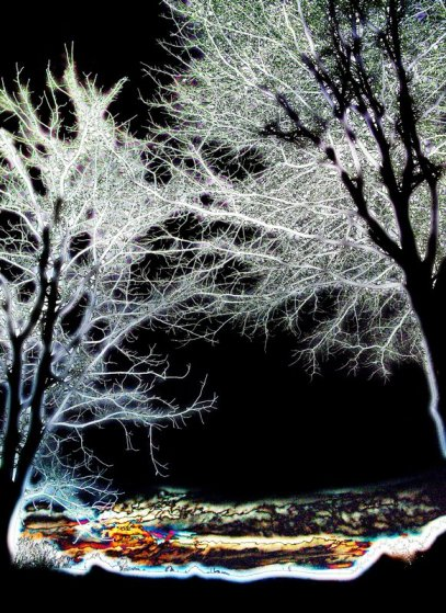 """Magical Winter Night"" by Tony Karp"
