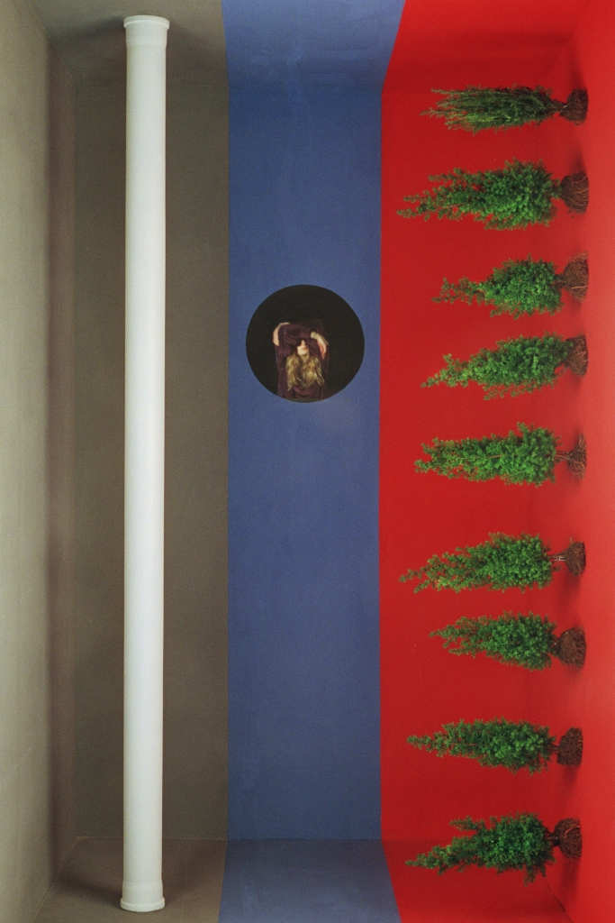 Limes-Francesca Floris-In Parentheses Literary Magazine-Issue 1 Volume 6-Multimedia
