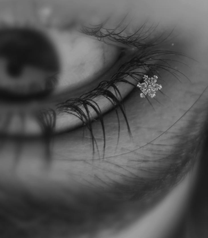 Right eye perched upon a snowflake / Bartosz Mazur / VS Rakenduvadhana / In Parentheses Literary Magazine / Spring 2021Right eye perched upon a snowflake / Bartosz Mazur / VS Rakenduvadhana / In Parentheses Literary Magazine / Spring 2021